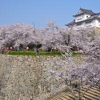 2019 さくらの名所を巡る旅《Part.3》 〜津山城&城下町探訪� 豪壮な石垣群と1,000本の桜の競演〜