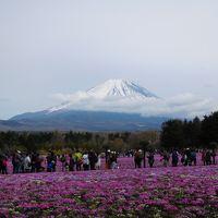 平成最後の温泉旅行は西伊豆へ~平成最後の富士山も拝めたよ♪