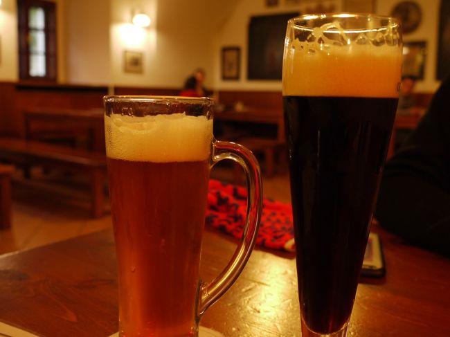 早春のオーストリア&チェコ2人旅 珠玉の4つの街を巡る5泊7日+ おまけの1Day台北 (10)ビールがメインのプラハ・2日目の夜