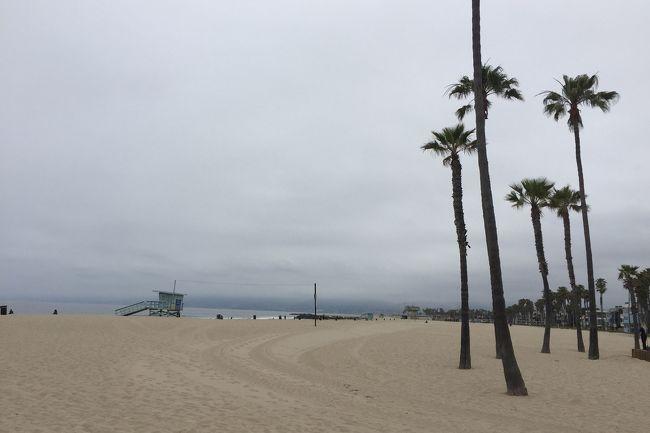 ベニスビーチにサンタモニカから歩いていってきました。