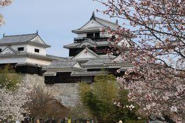 道後温泉には行かない愛媛松山の旅(その3)松山城で桜を愛でる
