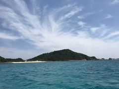 たびごは「令和初ダイビングは阿嘉島で」