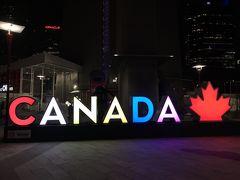 カナダ トロントとナイアガラフォールズ そして滞在時間3時間のアメリカ合衆国 �