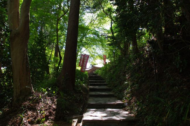 連休中の4月28日(日)が天気良さそうだったので、埼玉の山へ向かいました。<br />拝島駅でJR八高線に乗り換えました。良い天気で、八高線の車窓は素晴らしい眺め。高麗川駅で約1時間待ち、八高線のディーゼルカーに乗って、10:49にようやく明覚(みょうかく)に到着。明覚駅は洋風山小屋のような駅舎で、関東の駅百選の駅だそうです。<br />山行きには遅い歩き始めでしたが、なんとかなる気がしました。まず、都幾山(ときさん)に向かいました。今回は歩行距離を稼ぐつもりで、歩き始めました。延々と約5km、道路を歩きました。<br />都幾山の山腹に慈光寺が有ります。慈光寺の登山口より登り始め、中腹に着きました。たーくさんの板碑が立っています。慈光寺山門跡の板碑群だそうです。<br />概ね慈光寺に着きました。木々に囲まれた開山寶塔が良い雰囲気でした。本堂へお参りしました。上の方に観音堂が有ります。頑張って上りました。観音堂に来て、ちょっとびっくりしました。本堂よりもずっと大きく立派なお堂です。山の上なのに。彫刻も見事。天武天皇2年(673年)に観音様が安置されたのがこのお寺の始まりとのこと。<br />観音堂の奥に道が有ります。この先は参道ではなく、整備されていない感じの道。ジグザグじゃなくて、直登であり、標識が有りません。頑張って登り、PM1時過ぎ、標高463mの都幾山頂上に到着。この頂上は眺望が有りません。山頂標が金属板に彫金したもので、ユニークです。<br />もう、疲れていましたが、次、笠山を登ることにしました。笠山頂上までは高低差がまだ400m有るはずでしたが、近いように見えました。舗装された緩やかな林道を行きました。笠山峠から笠山への道が分かりにくく、たまたま居た人に教えてもらいました。笠山頂上への道もジグザグではなく、直登で、標識がほとんど有りません。頑張って登りました。<br />笠山頂上の標識に到着しましたが、ここが最高点じゃないみたい。緊張する岩場を進み、ようやく、笠山神社に到着。笠山は標高837mです。PM4時過ぎでした。お参りし、少々休憩しました。<br />神社の前が頼りない急な階段で、迂回する道が有り、そっちを下りました。あとは下るだけ。所々に滑りそうな箇所が有り、慎重に下りました。道が緩やかになり、笠山神社の下社に到着。この下社はわりと高い位置であり、さらに下った所に鳥居が有り、林道に出ました。<br />小川町駅(埼玉県)に向かい、延々と歩きました。途中でどっぷりと暗くなっちゃいました。下社の鳥居から小川町駅まで9km有ったようです。<br />東武東上線で帰途に就きました。