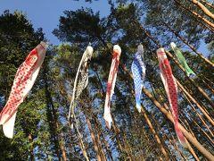 令和の初旅(^^)スキーを楽しんだ薮原に再び!こだまの森でアウトドア満喫・と・木曽福島散策も楽しかった