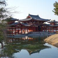 京都訪問2018�(醍醐寺、萬福寺、宇治平等院)