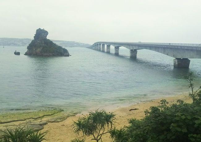 この日から3日間沖縄を満喫します☆