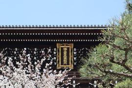 京都・さんぽ地図の旅 ⑤平安神宮~真如堂
