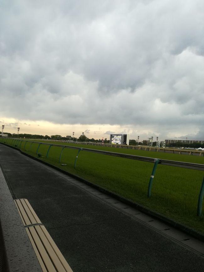 令和になり最初の東京競馬開催となりました。新時代の幕開けということで運試しを!!との志しで東京競馬場へと行きました。天気も良く良い気候だったんですが、、、。まさか最後にこんな結末がまっているとは、、、。(泣)