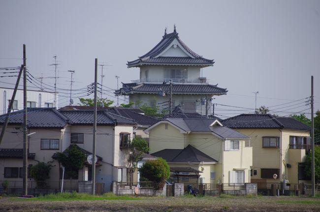 5月3日は「埼玉スリバチ学会」のフィールドワークに参加し、埼玉県加須(かぞ)市へ行きました。<br />東武伊勢崎線の加須駅に少々早く着いたので、北口側を単独で散策。諏訪神社にお参りし、すき家で朝食として豚丼を食べました。会の川の水路の景色が良かった。<br />利根川河川敷での加須市民平和祭の開催日でした。<br />10時頃、学会の皆様が集合し、無料送迎バスで利根川沿いへ行き、利根川沿いの大越をしばし歩きました。<br />11時半に巨大鯉幟が揚がるということで、祭の会場へ行きました。長さ100mの巨大鯉幟が空へ上がり始めましたが、トラブル発生。口の輪っかが折れてしまったとのこと。空を泳ぐことはできませんでした。(午後は雄大に泳いだそうです。)<br />無料送迎バスと朝日バスを乗り継ぎ、騎西(きさい)へ行き、昼食はうどんを食べました。固めのうどんでおいしかった。<br />玉敷神社へ行きました。大宝3年(703年)創建と伝えられている古社だそうです。隣の玉敷公園では藤が真っ盛りでした。藤は目で見るとどうってことないのですが、撮ると見事に写り、不思議なものです。<br />騎西の寺、神社、用水路、城跡、板碑等を巡りました。<br />フィールドワーク後の魚民での反省会も楽しかった。