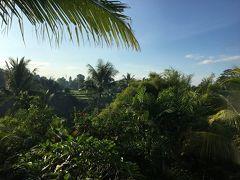 初めてのバリ島旅行 その2 ウブドでアクティビティ編
