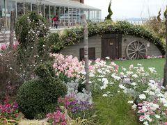 春の横浜♪ Vol.3:横浜赤レンガ倉庫の美しい花壇♪