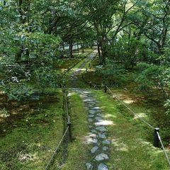 GW10連休に行く京都&奈良の旅 京都編