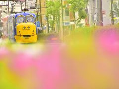 岡山市街を走るウィルソンとブルースター!「おかでんチャギントン」を追いかけて