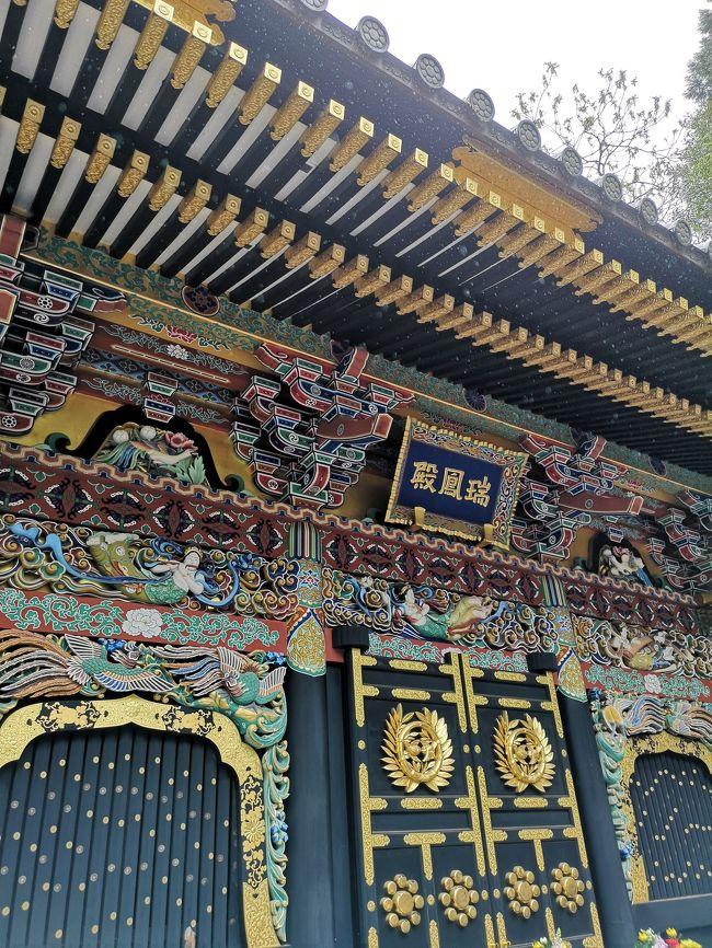 仙台と言えば、伊達政宗がテーマ!令和最初の日となる5月1日、仙台市内をシティループバス「るーぷる仙台」を利用して観光しました(^^)v