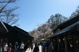 春の軽井沢♪ Vol.6:中軽井沢 「ハルニレテラス」♪