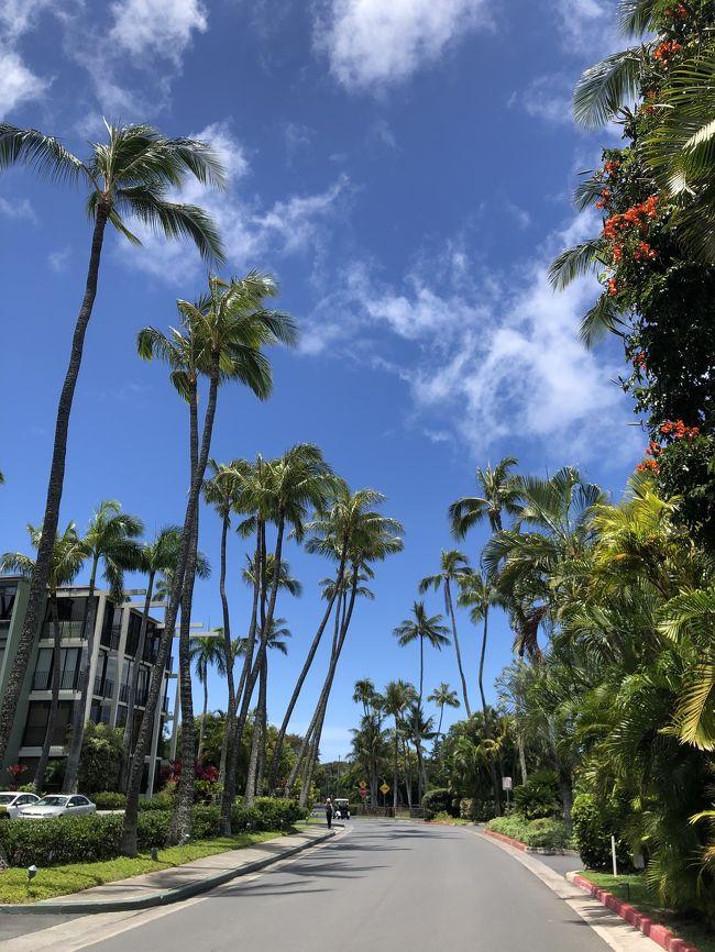 後半ハワイは、中日はゆったりハワイ、1日はバイクでウロウロ、7wあっと言う間に過ぎて行きました。