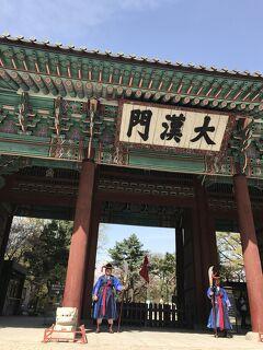 韓国  初ひとり旅(1)ソウルの桜めぐり