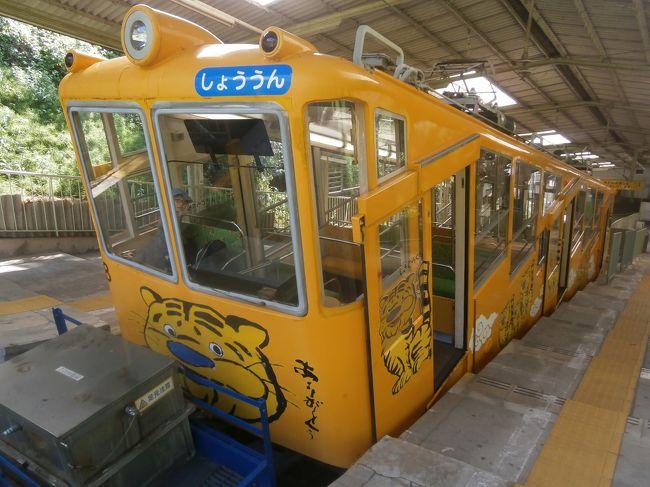 2019年4月27日(土)~5月6日(月)に近鉄・伊賀鉄道・養老鉄道・三岐鉄道・四日市あすなろう鉄道で実施された「漢数字駅名スタンプラリー」に出かけてきました。スタンプラリーは各沿線にある駅名に数字のついた26駅を巡ってスタンプを5日間で集めるもので、今年は天皇陛下の退位と即位に伴う10連休となったため、子どもの暇つぶし?にはうってつけの企画です。<br /> 5日間のフリー切符はおとな9500円、子ども4750円(特急に乗ると料金は別)でした。すべての駅を巡ると鉄道車両のピンバッジ10個がいただけます。<br /> 1日目のその3は西信貴ケーブルを利用して信貴山朝護孫子寺を訪れました。