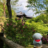 2019 ゴールデンウイークの後半は里帰りをかねて京都に行って来ました