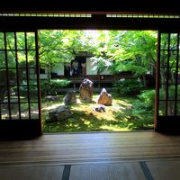 青空と青もみじと静寂に包まれた京都〜東福寺・建仁寺を楽しむ