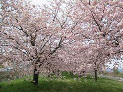 GW長野温泉と桜満喫の旅(3)