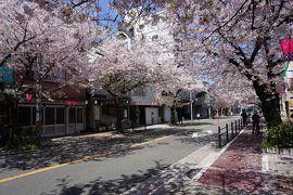 関西散歩記~2019-3 大阪・大阪市港区編~