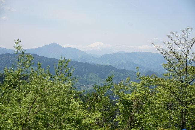 5月5日のこどもの日、高尾山に行って来ました。<br />往路は6号路、復路は稲荷山コース。<br />沢に沿って登る6号路は、新緑が綺麗でザ・森林浴という感じでした(^^)<br />6号路は、本当にオススメのコースです。