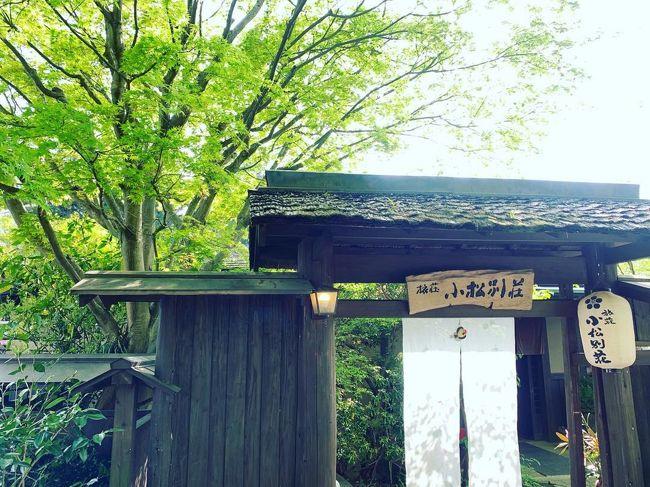 美しい新緑のトンネルを抜けて筋湯温泉へ。~旅荘小松別荘、そして高千穂に帰省してのんびりと~