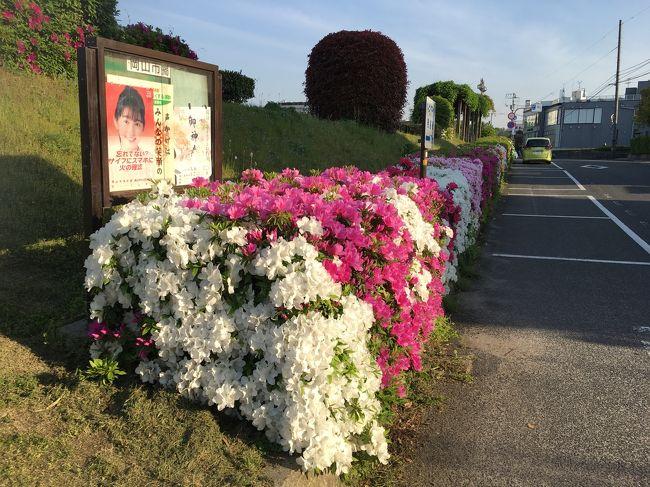 列車で周る西日本。大阪を出て在来線の旅を続ける。一部在来線でないが。