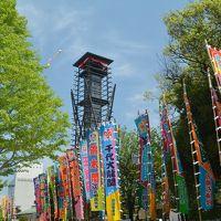 東京散歩 両国駅周辺「江戸東京博物館」「旧安田庭園」「すみだ北斎美術館」を歩きました。