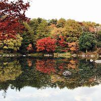 2016年11月 昭和記念公園に紅葉を見に