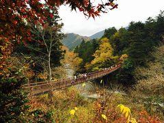 2015年11月 秋川渓谷で紅葉狩り