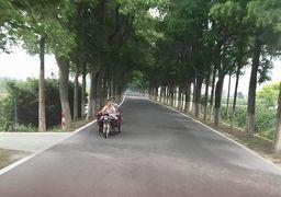 呉の国『上海・無錫・蘇州』のツアー旅④