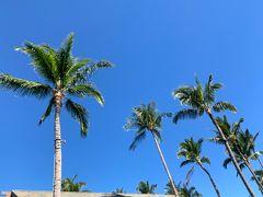 2019年 令和元年 ハワイ島