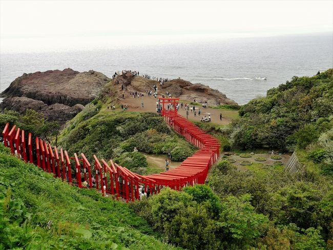 ♪思えば~とお~くに来たもんだ~♪<br /><br />もう旅に出て、5日目です。残念ながら、お天気に恵まれません。それでも、雨に洗われた新緑の清々しさや、雨にさえ映える景観・・日本はえらい(これは、素晴らしいの意味のえらい!)<br /><br />今日は山口のホテルから、青海島、仙崎市、元乃隅稲成神社、角島大橋などを廻り、下関からタイトルにもしたちょびっと九州行きます。関門トンネルを歩いて門司まで行っただけなんですけどね^^<br /><br />それにしても、今日は渋滞ばかり!元乃隅稲成神社までたどり着くのも大変。<br />角島大橋は大渋滞でした。道の駅も駐車場が車で一杯で寄ることも出来ません。<br /><br /><br />ですが、知らない街を訪れる旅はウキウキします。日本はえらいって又もや言ってしまうのです。