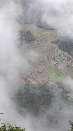 人生初ひとり旅_南米マチュピチュ&イースター島(3)土砂降りのマチュピチュ
