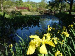 浜名湖ガーデン・パーク。「花の美術館」は、火曜日午後は休園。残念。