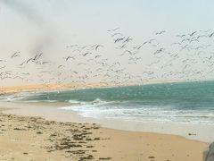 モーリタニアでサハラ砂漠を満喫10最終回