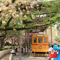 八重桜咲く飛鳥山公園は子ども達で大賑わい♪