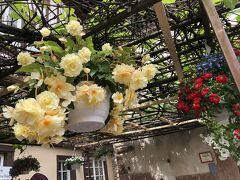 花々の楽園マイナウ島と美しきアルザス地方ドイツ黒い森地方を巡る8日間 4日目の1 ザスバッハバルテン、ゲンゲンバッハ