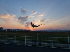 週末ちょこっと散歩 阪急曽根界隈(飛行機撮影は難しかった・・・)