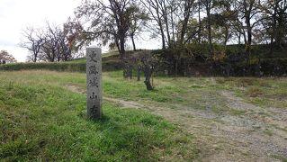祝 世界遺産登録 百舌鳥・古市古墳群「河泉王陵49箇所巡り」スタンプ帳も登場か