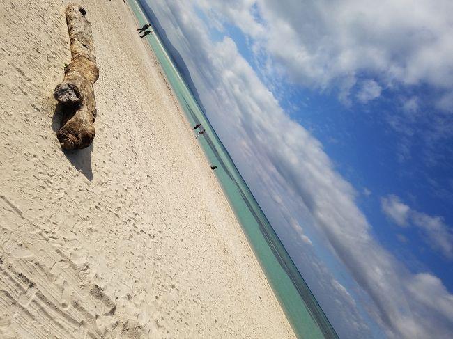 石垣島をレンタカーでドライブ<br />沖縄本島で海は見慣れているけど、<br />離島に来るとさらに美しい海に出逢えた~