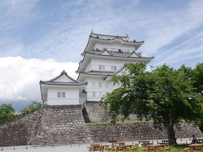 以前から行ってみたかった小田原城。国道一号線を通過したり、箱根に行くことはあっても、小田原の街を散策することはありませんでした。そしてついにその時が来ました。朝早く家を出て、小田原へ。<br />まずは、小田原城と報徳二宮神社へ。曇りの予想の天気予報でしたが、晴れていい天気です。<br /><br />小田原散策後半はこちら<br />5月の小田原②☆清閑亭・小田原文学館☆小田原おでん本店☆2019/05/15<br />https://4travel.jp/travelogue/11495134<br />