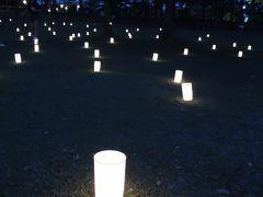 ふらふら散歩in燈花会