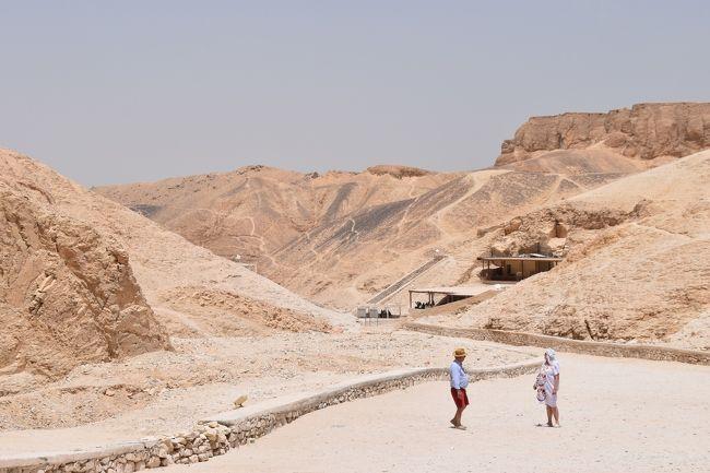 GWを利用して憧れのエジプトを観光しました。<br />アスワンから列車を使いカイロまで行くというキツキツスケジュールでしたが、意外と行けました。<br />大好きな遺跡が目当てでしたが、噂に反して美味しすぎたエジプト料理や、温かい人達に元気をもらいました。<br />セキリュティも厳重で、治安も良かったです。<br /><br />◆スケジュール<br />4/27 関空から移動<br />4/28 エジプト着→アスワン観光<br />4/29 アブシンベル神殿観光→ルクソールへ列車で移動<br />4/30 ルクソール観光→寝台列車でカイロへ移動<br />5/1~5/3 カイロ観光<br />5/4 帰国
