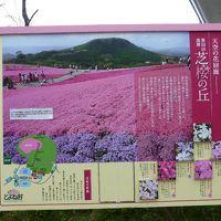 芝桜を求めて・・・ (茶臼山高原)