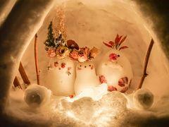 冬の北海道お祭りめぐり③(小樽 小樽雪あかりの路)