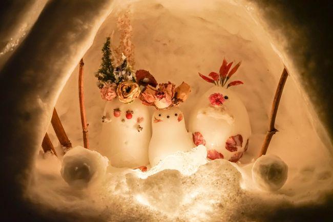 去年の秋に続いて2度目の北海道旅。<br />今回は一人旅で、函館→札幌→小樽で冬のお祭りめぐりをします。<br /><br />1日目:函館 五稜郭タワー「五稜星の夢イルミネーション」<br />https://4travel.jp/travelogue/11489481<br /><br />2日目:札幌 「さっぽろ雪まつり」<br />https://4travel.jp/travelogue/11491867<br /><br />3日目:小樽 「小樽雪あかりの路」<br />